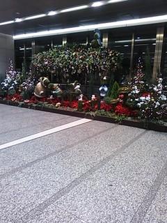 名駅クリスマスツリー