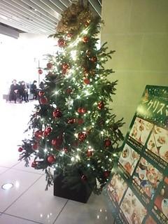 高島屋クリスマスツリー